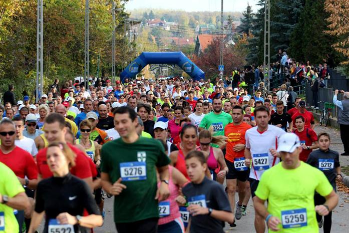 Ultramaraton Wiedeń - Bratysława - Bupapeszt (fot. materiały prasowe organizatora)