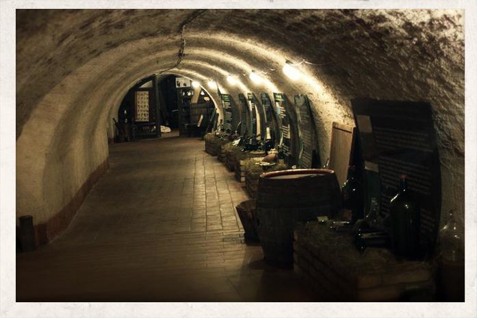 Narodowe Muzeum Wina