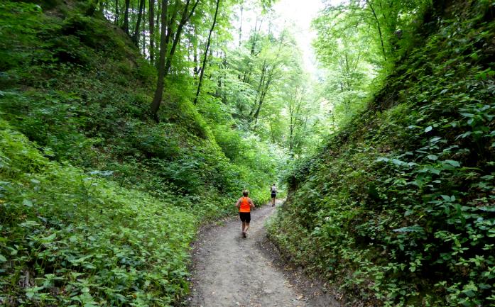 Malownicze trasa w Kazimierskim Parku Krajobrazowym