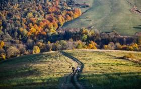 Łemkowyna Ultra Trail