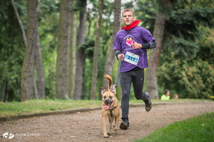 Bieg z psem_wolontariat