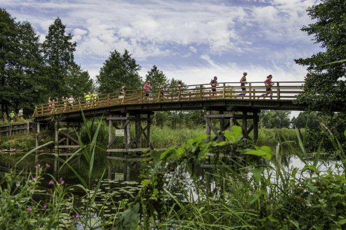 Drewniane kładki na trasie maratonu / fot. Piotr Dymus