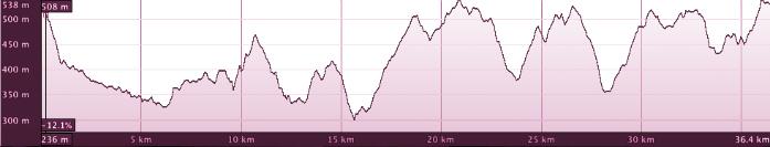 CHT-Altimetria-37km