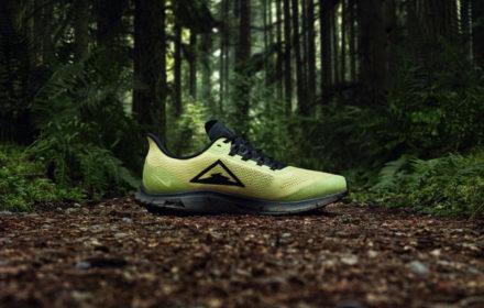 Nike_Pegasus_Trail