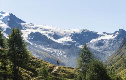 fot.  Ultra Tour Monte Rosa / G.Meneghello