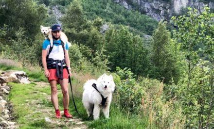 Biegi w Norwegii - Sebastian Mamaj